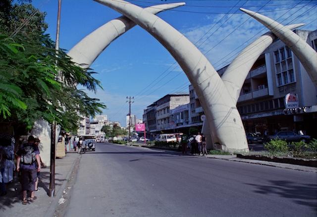 Mombassa Tusks