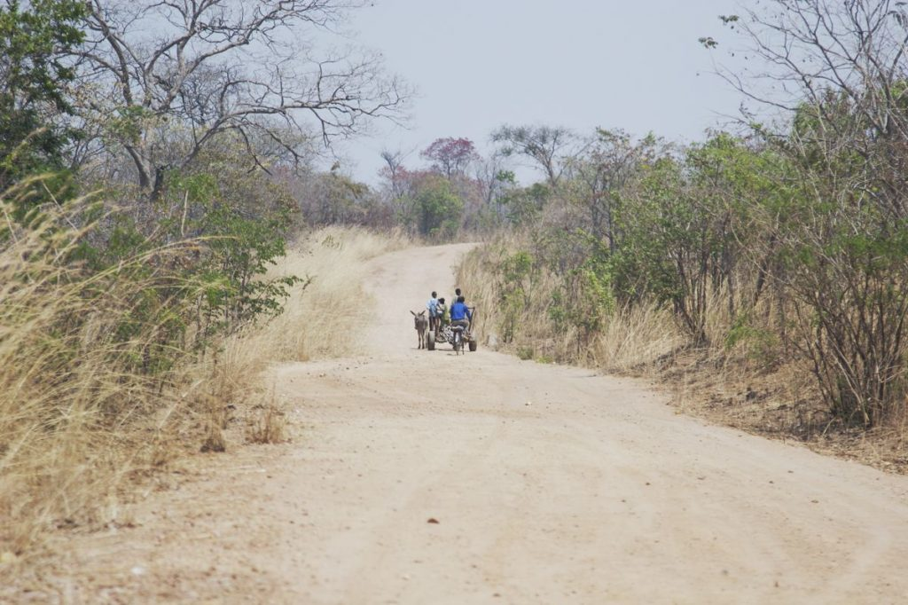 Zambia Rural Road