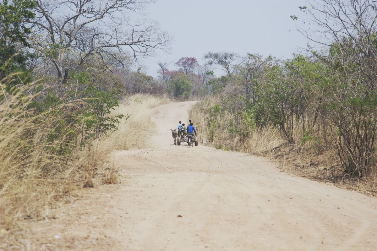 World Bank approves US$200 Million for rural roads in Zambia