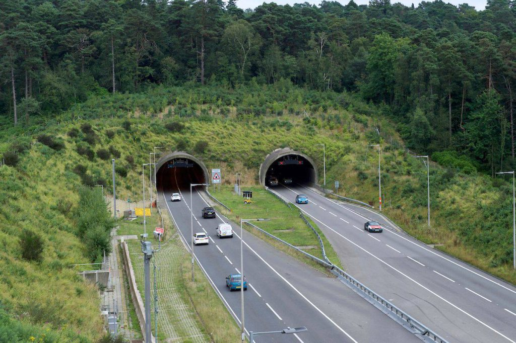 Anniversary of tunnel opening sees the Hindhead area recognised as a wildlife haven