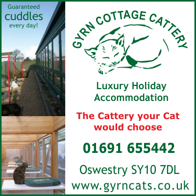 Gyrn Cottage Cattery - Luxury Holiday Accommodation for your cat. Oswestry, Shropshire