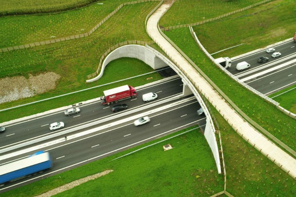 The green bridge over the A556 in Cheshire is seamlessly integrated with the context and allows for wildlife to cross