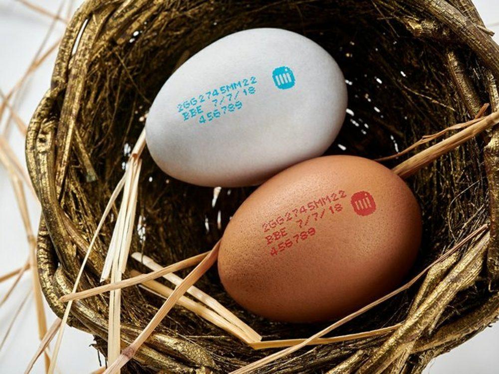 Markem-Imaje's Inkjet printer egg