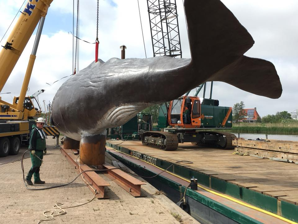 The SENNEBOGEN 1100E lifts the 17-ton sperm whale in Harlingen's harbour