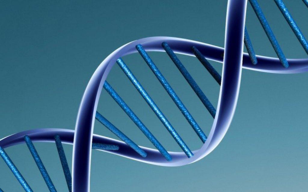 DNA - Image by Caroline Davis