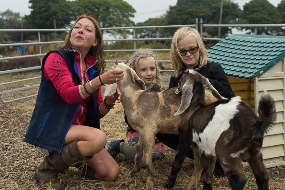 Serenity Farm, a charity based in Stoke-on-Trent, was awarded £10,560 by the VINCI UK Foundation to upgrade its facilities and improve its range of attractions for people with learning disabilities and from marginalised groups.