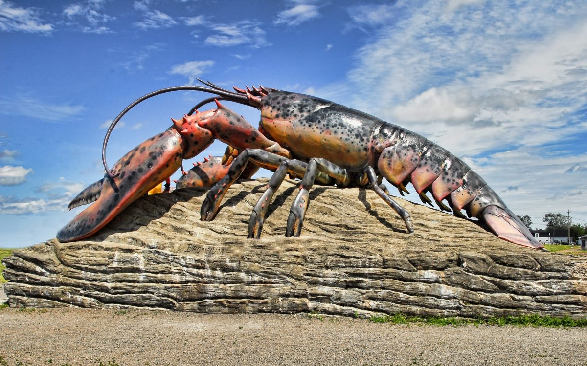 MIT inspired by a Lobster's underbelly for the design of tough flexible body armour