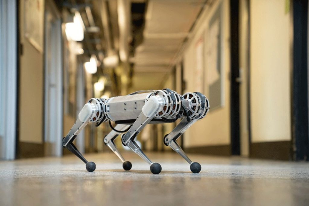 MIT's new mini cheetah robot is springy, light on its feet, and weighs in at just 20 pounds.