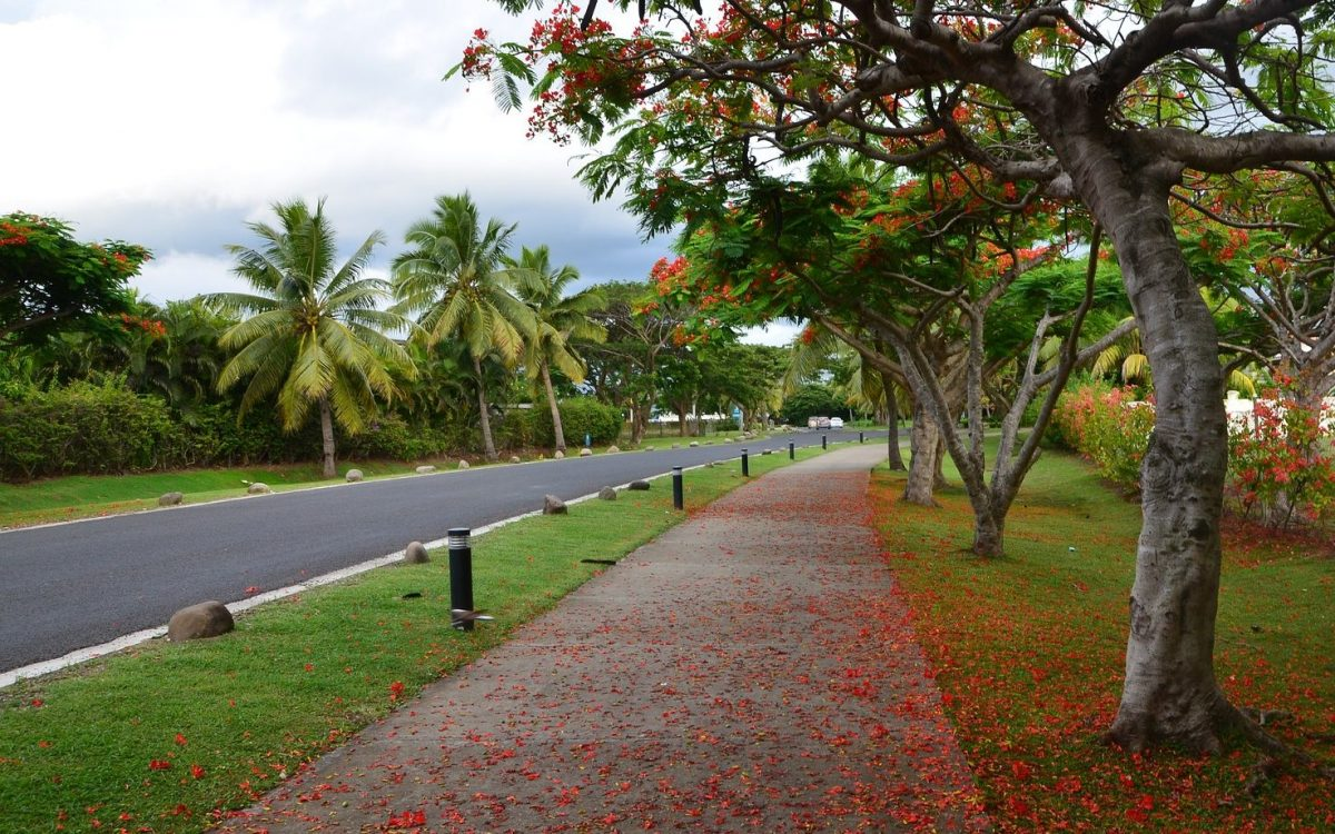 ADB funded roads in  Fiji helping to revive their rural economy