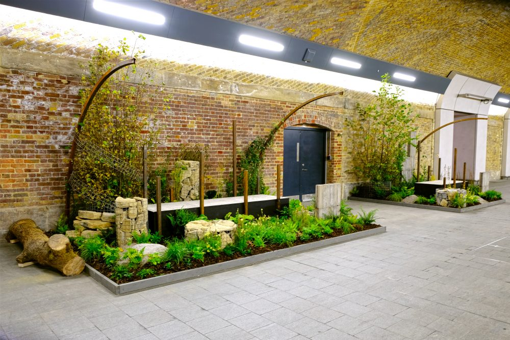 New Forms - Sarah Wilson - Journeys With Plants (photo Darryl Moore Cityscapes)
