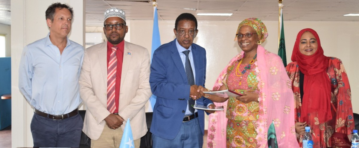 AfDB signs $28.8m grant with Somalia for road and water projects