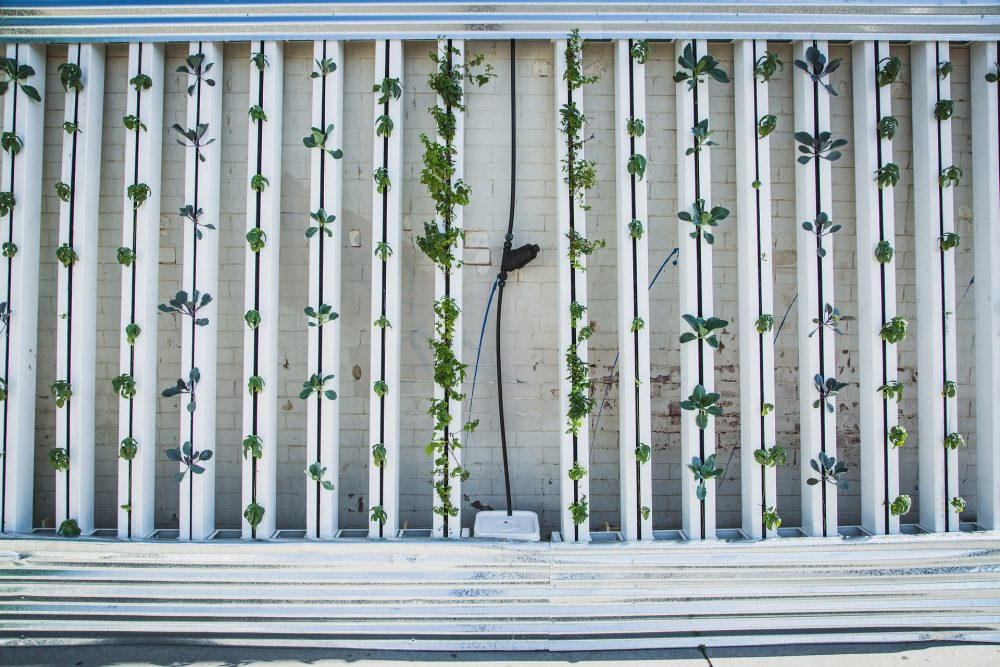 Could Vertical Farming transform agriculture?