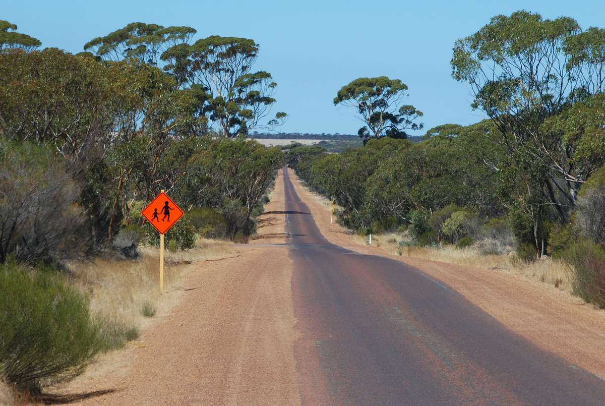 Bussell Highway $85m duplication project gets green light in Western Australia