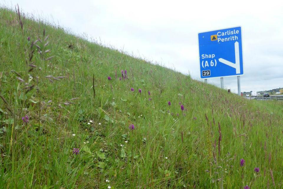 Highways England restores milestones in £5.2m environment improvements