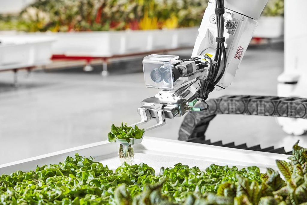Iron Ox raises $20m for Robotic Greenhouse Technology