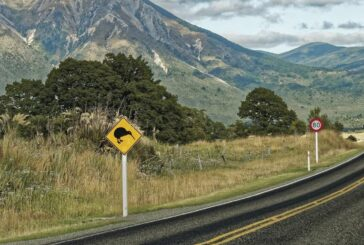 New Zealand-based PiP IoT partners with Yotta to enhance smart asset management