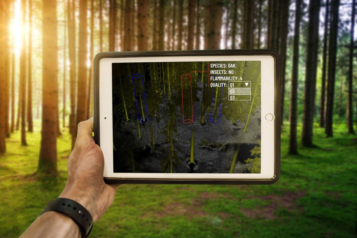 Outsight launches first real-time LiDAR solution for the Forestry Industry