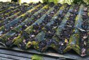 Thermal Recycling pioneers CalmagAsbestos Roof Sheet substitute