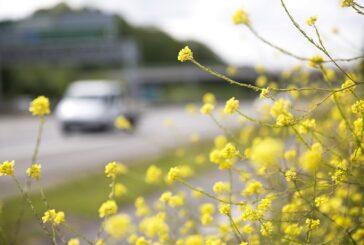Highways England announcesambitiousNet Zero 2050 carbon roadmap