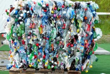 Yes Recycling expands with launch of recycled plastic Ecosheet plywood alternative