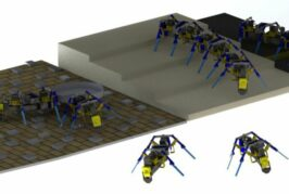 University of Notre Dame researchers create four-legged swarm robots